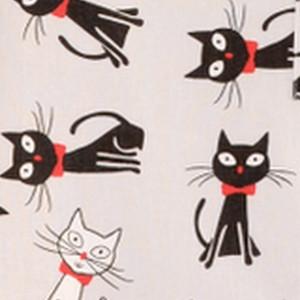 koty + czerwony